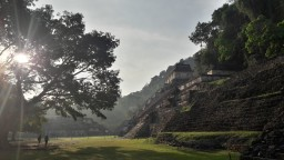 Dernier acte au Chiapas, Palenque pour finir en beauté.